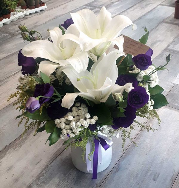 Vazoda Mor ve Beyaz Çiçekler