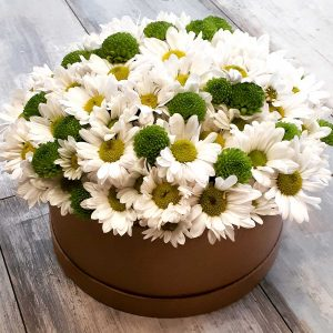 Kutulu Çiçekler