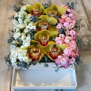 Orkide & Kalancho