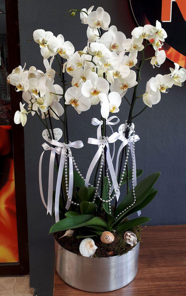Metal Seramikte Orkide